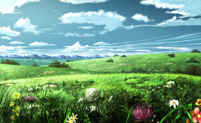Купить раскраски-пейзажи для взрослых