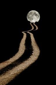 Купить книгу Лунная тропа, автор Сара Джио