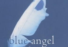 """Купить книгу """"Блакитний янгол"""", автор Франсін Проуз"""