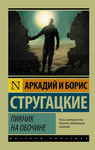 "Книга ""Пикник на обочине"" обложка"