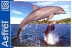 Дельфины. Пазл, 1000 элементов