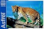 Леопард. Пазл, 1000 элементов