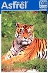 Тигр. Пазл, 1000 элементов