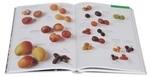 """Купить книгу """"Элементы питания. Визуальная энциклопедия"""""""