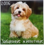 Календарь 2016 (на скрепке). Забавные животные
