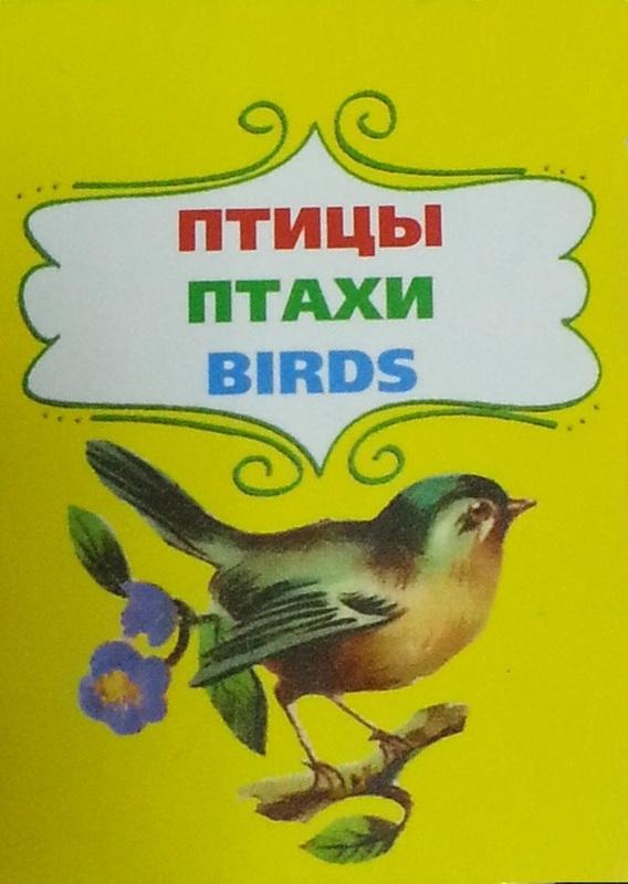 "Купить книгу ""Птицы. Птахи. Birds"""