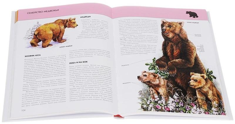 """Купить книгу """"Животные. Полная энциклопедия"""""""