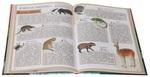 """Купить книгу """"Атлас животных для самых маленьких"""""""
