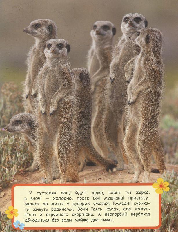 """Купить книгу """"Дивовижні тварини"""""""
