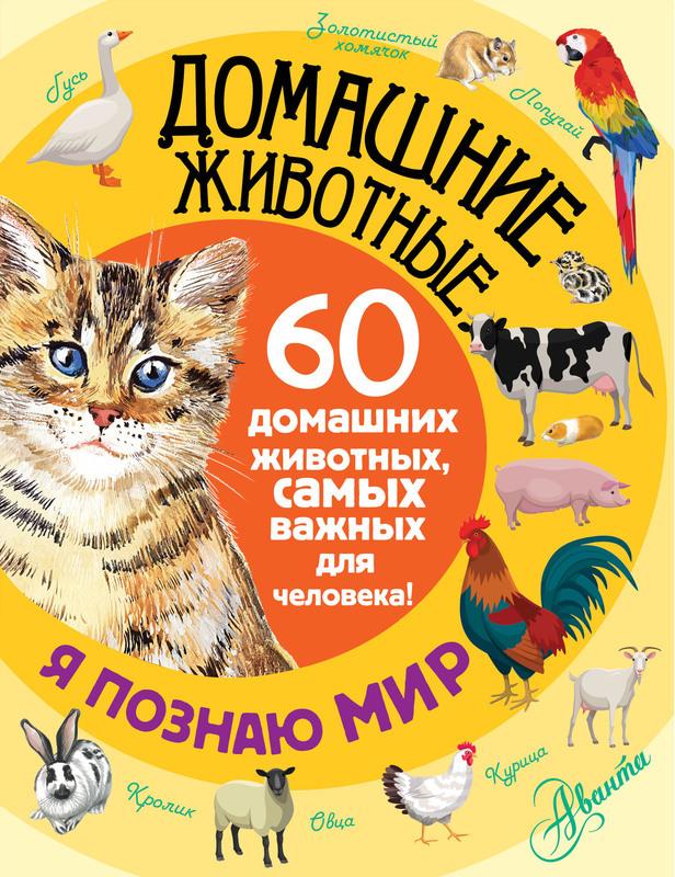 """Купить книгу """"Домашние животные. 60 домашних животных самых важных для человека!"""""""