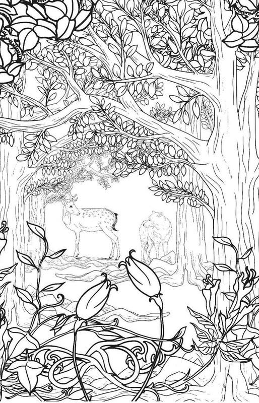 Купить книгу Загадочный лес. Мини-раскраска-антистресс для ...
