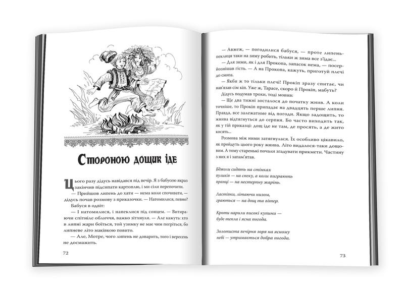 Погостини - купить и читать книгу