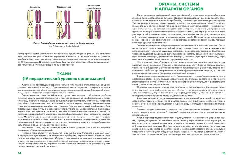 "Купить книгу ""Анатомия человека"""