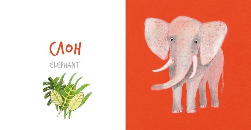 """Купить книгу """"Собери Радугу. Животные Африки"""""""