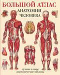 Большой атлас анатомии человека. Системы и органы