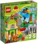 Конструктор LEGO Вокруг света: Азия (10804)