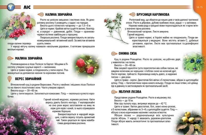 "Купить книгу ""Рослини і тварини України"""