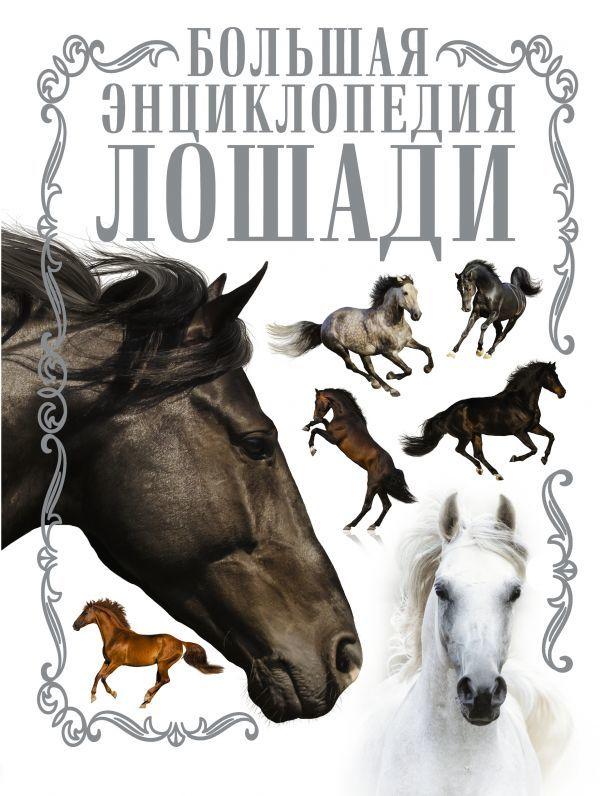 """Купить книгу """"Лошади. Большая энциклопедия"""""""