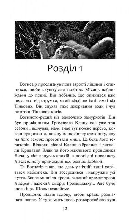 """Купить книгу """"Коти-вояки. Книга 7. Шлях Вогнезора"""""""