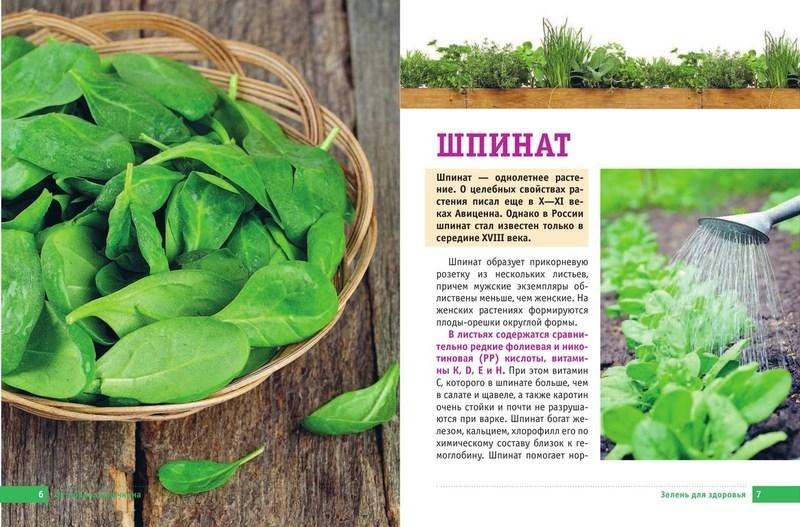 """Купить книгу """"Самая полезная зелень для здоровья от Октябрины Ганичкиной"""""""