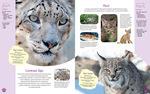 """Купить книгу """"Красочный мир животных"""""""