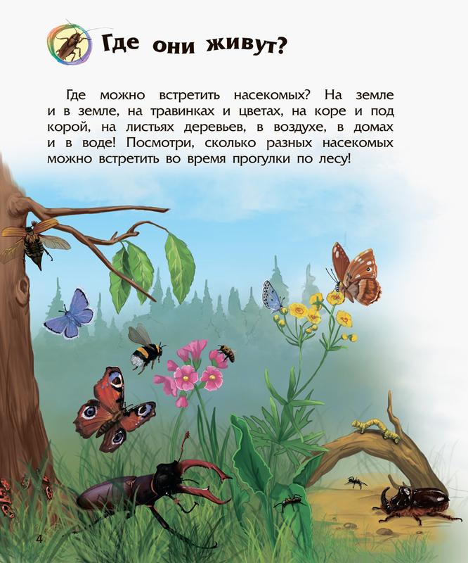 Энциклопедия дошкольника. Насекомые - купить и читать книгу