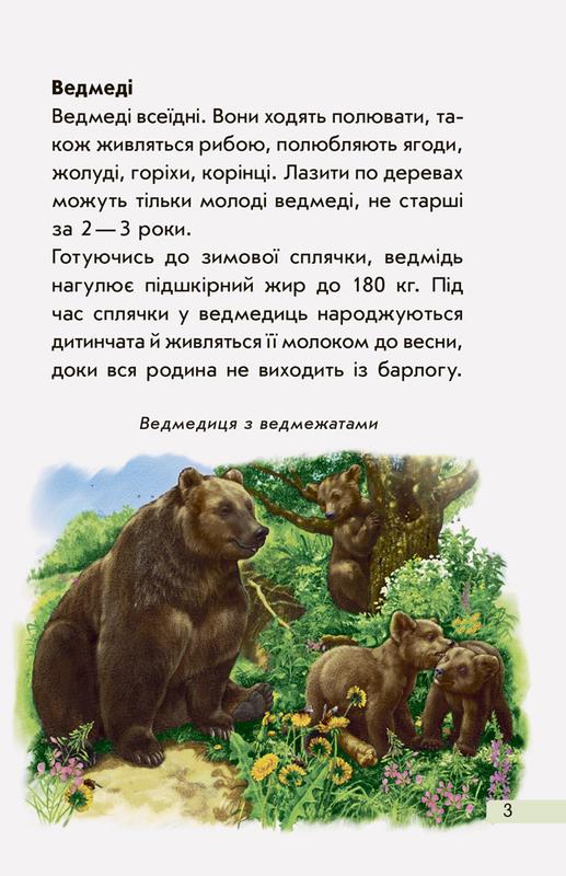 """Купить книгу """"Міні-енциклопедії. Європейські тварини"""""""