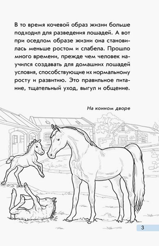 """Купить книгу """"Мини-энциклопедии. Всё о лошадях"""""""