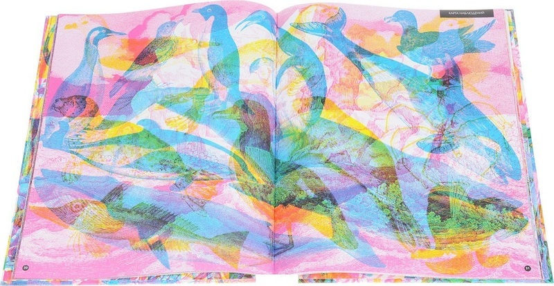 """Купить книгу """"Природа. 3 изображения в 1"""""""
