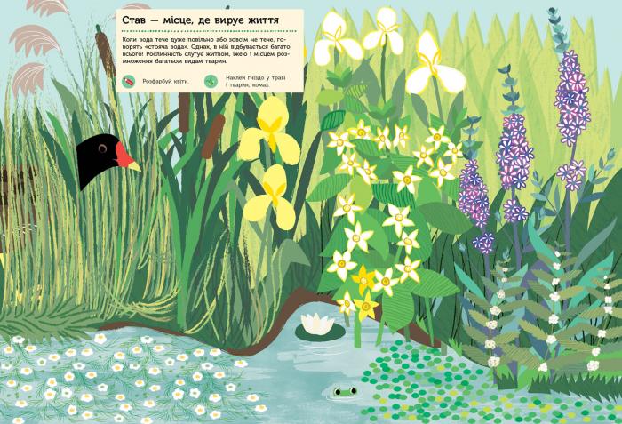 """Купить книгу """"Моя книга природи. Річка і ставок"""""""