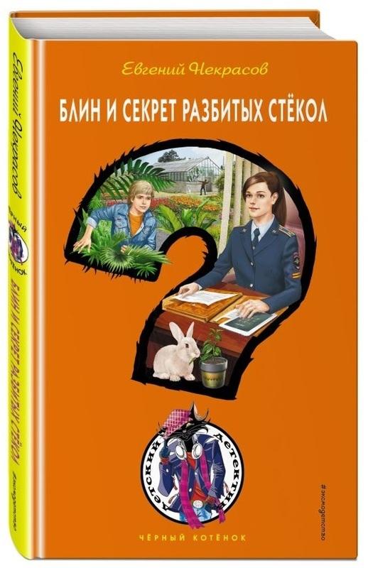"""Купить книгу """"Блин и секрет разбитых стёкол"""""""