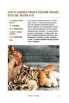 Запасы из грибов и орехов. Соление, маринование, сушка - купить и читать книгу