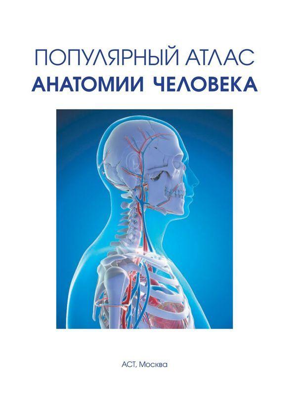 """Купить книгу """"Популярный атлас анатомии человека"""""""