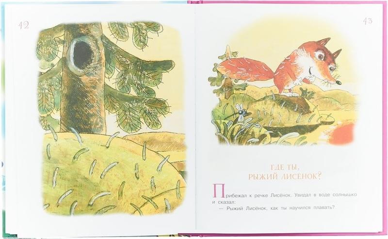 """Купить книгу """"Солнечный Заяц и Медвежонок"""""""