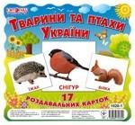 Міні-картки. Тварини та птахи України