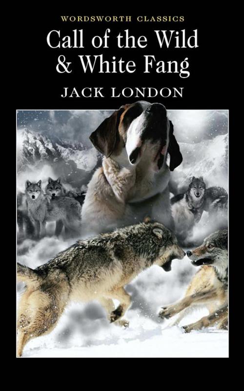 "Купить книгу ""Call of the Wild. White Fang"""