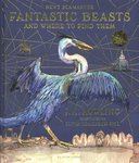 "Купить книгу ""Fantastic Beasts and Where to Find Them (Illustrated Edition)"""