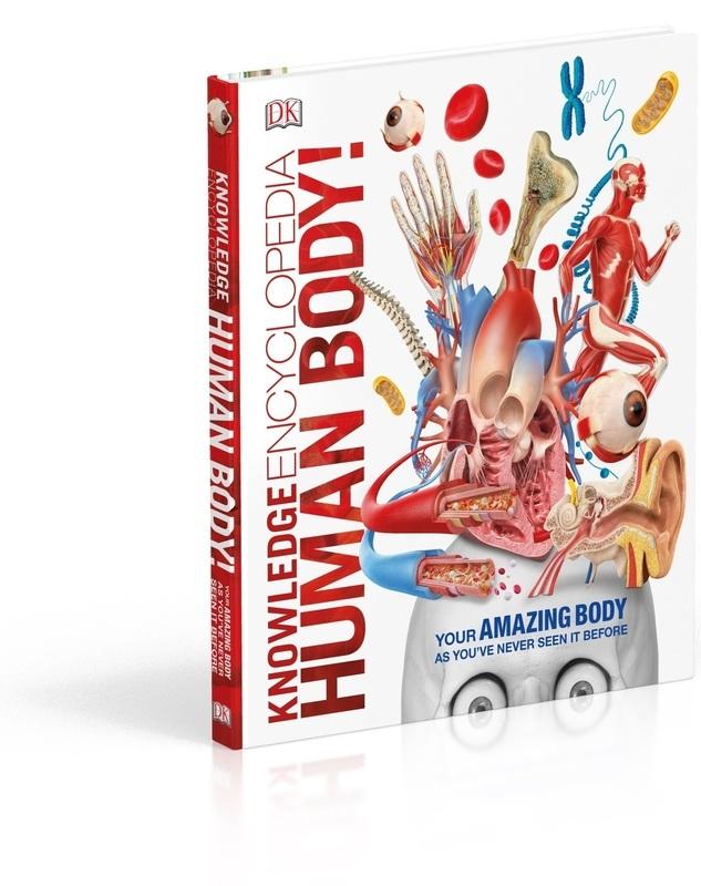 """Купить книгу """"Knowledge Encyclopedia Human Body"""""""