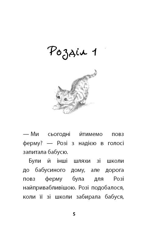 """Купить книгу """"Руданчик — кошеня-безхатько"""""""