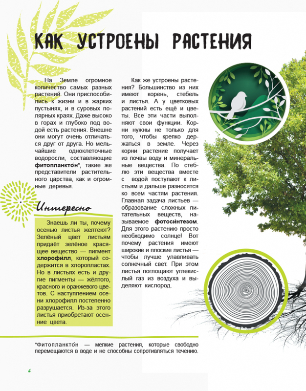 """Купить книгу """"Жизнь леса. Энциклопедия"""""""