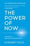 "Купить книгу ""The Power of Now: A Guide to Spiritual Enlightenment"""