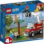 Конструктор LEGO Пожар на пикнике (60212)