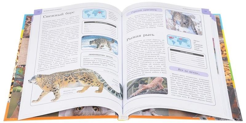 Животные - купить и читать книгу