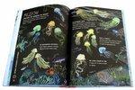 """Купить книгу """"Большая книга моря"""""""