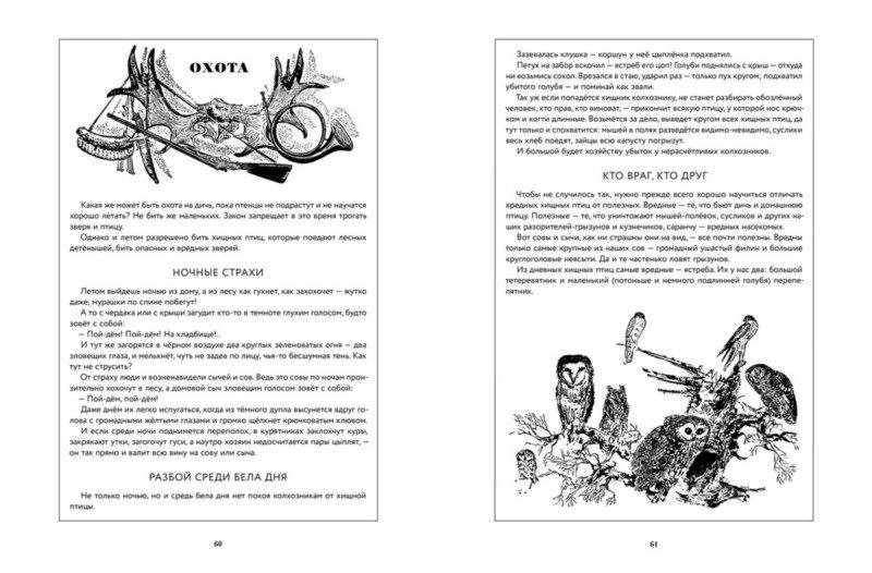 """Купить книгу """"Лесная газета. Лето"""""""