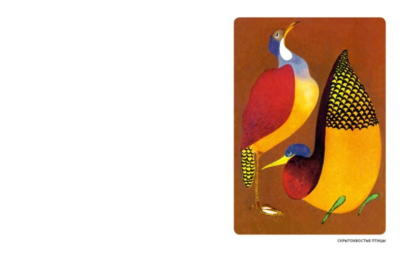 """Купить книгу """"Мир животных. Рассказы о птицах"""""""