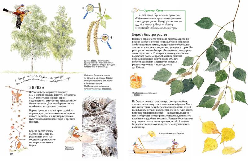 """Купить книгу """"Софи в мире деревьев"""""""