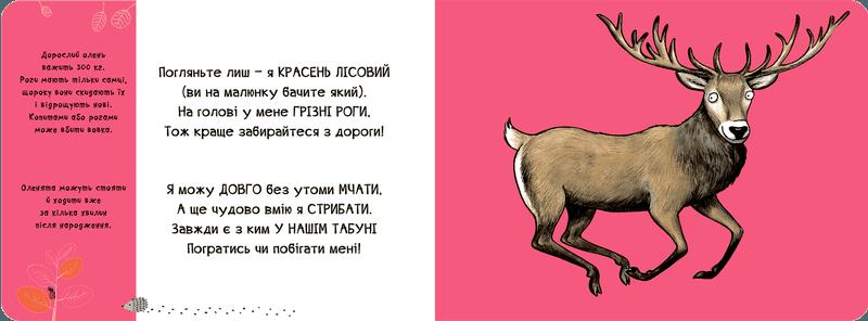 Тваринки - половинки. У лісі - купить и читать книгу