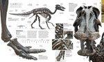 "Купить книгу ""Prehistoric: The Definitive Visual Guide"""