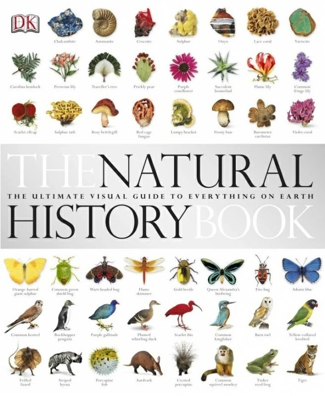 "Купить книгу ""The Natural History Book"""